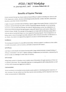 benefits of equine therapy pg1 001